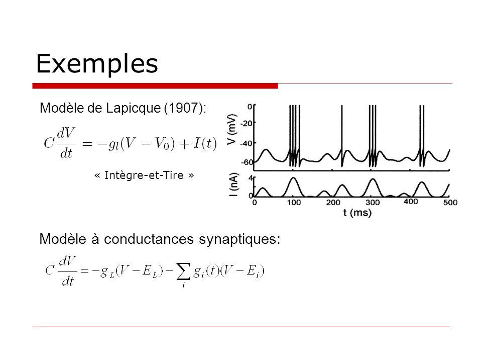 Exemples Modèle de Lapicque (1907): « Intègre-et-Tire » Modèle à conductances synaptiques: