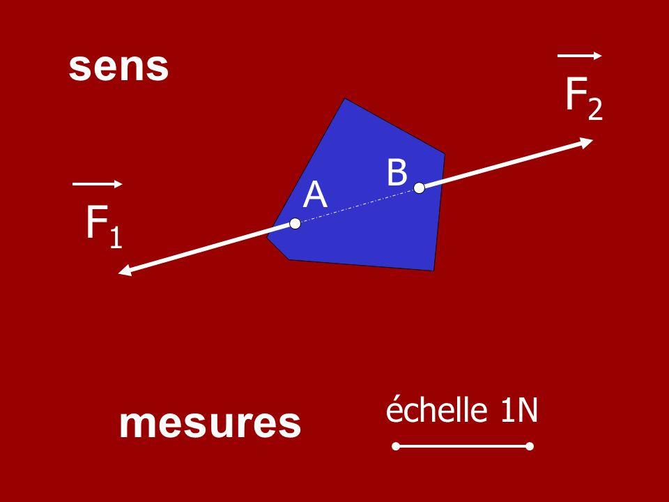Les caractéristiques des forces sont : - le point dapplication - la direction - le sens - la mesure (intensité) F1F1 F2F2 A B