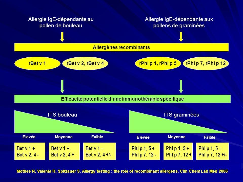 Allergie IgE-dépendante au pollen de bouleau Allergie IgE-dépendante aux pollens de graminées Allergènes recombinants rBet v 1rBet v 2, rBet v 4rPhl p