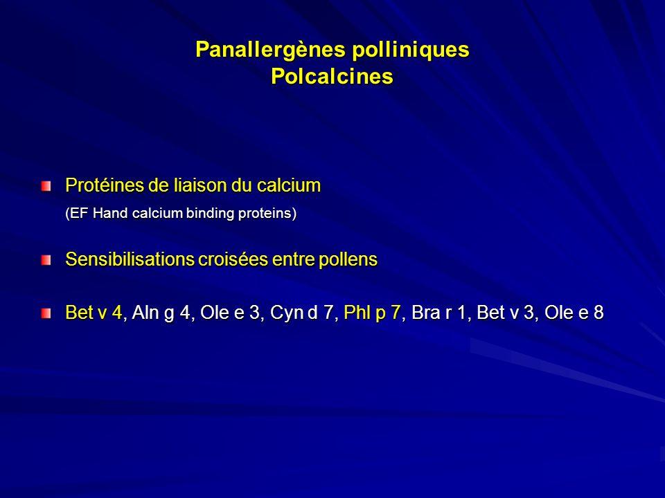 Bases moléculaires des réactions croisées entre pollens PR 10PFLEFPLTPIFR FAGALESFAGALES Bétulacées Bouleau Bet v 1Bet v 2Bet v 4Bet v 6 AulneAln g 1Aln g pflAln g 4 Corylacées CharmeCar b 1Car b 2 NoisetierCor a 1Pfl Fagacées ChêneQue a 1Que a pfl ChâtaignierCas s 1Cas s pfl Graminées Phléole Phl p 12Phl p 7Phl p 1Phl p 5 ChiendentCyn d 12Cyn d 7 Herbacées AmbroisieAmb a 8Amb a 6 ArmoiseArt v 4Art v 3 Oléacées OlivierOle e 2 Ole e 3 Ole e 8 Ole e 7 Ole e 1 FrênePflFra e 3Fra e 1 LilasSyr v 3Syr v 1 TroeneLig v 1 rBet v 1 : < 0,10 kU/l rBet v 2 : 7,75 kU/l rBet v 4 : < 0,10 kU/l rPhl p 1 : 57,7 kU/l rPhl 5b : > 100 kU/l rBet v 1 : < 0,10 kU/l rBet v 2 : 7,75 kU/l rBet v 4 : < 0,10 kU/l rPhl p 1 : 57,7 kU/l rPhl 5b : > 100 kU/l