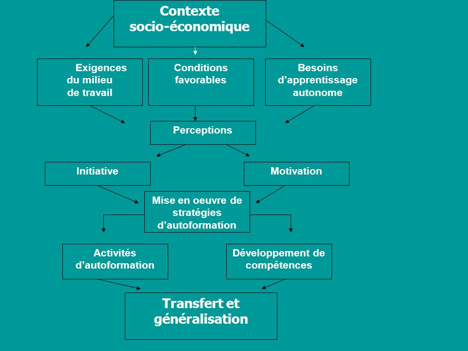 Contexte socio-économique Exigences du milieu de travail Besoins dapprentissage autonome Conditions favorables Perceptions MotivationInitiative Mise e