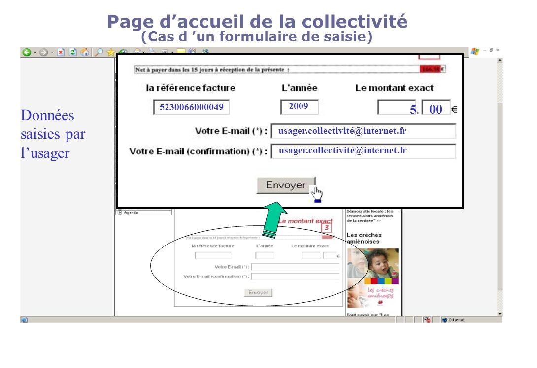 Page daccueil de la collectivité (Cas d un formulaire de saisie) 5230066000049 2009 500 usager.collectivité@internet.fr Données saisies par lusager
