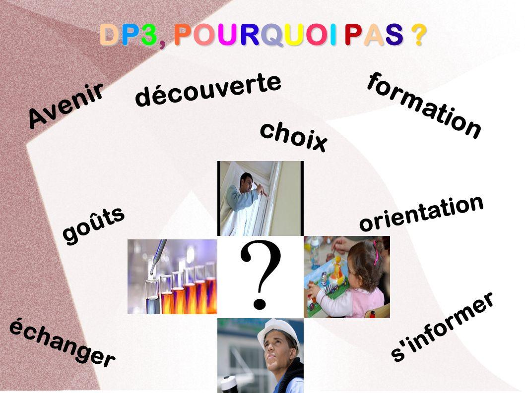 DP3, POURQUOI PAS ? Avenir orientation découverte goûts choix formation s'informer échanger