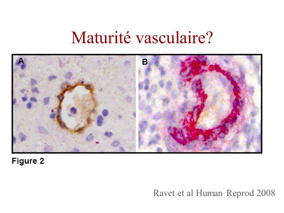 Ravet et al Human Reprod 2008 Maturité vasculaire?
