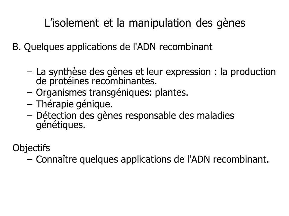 Lisolement et la manipulation des gènes B. Quelques applications de l'ADN recombinant –La synthèse des gènes et leur expression : la production de pro