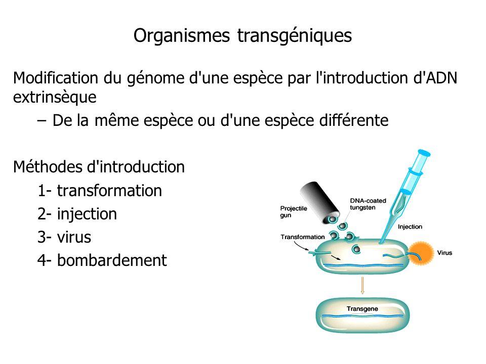 Organismes transgéniques Modification du génome d'une espèce par l'introduction d'ADN extrinsèque –De la même espèce ou d'une espèce différente Méthod