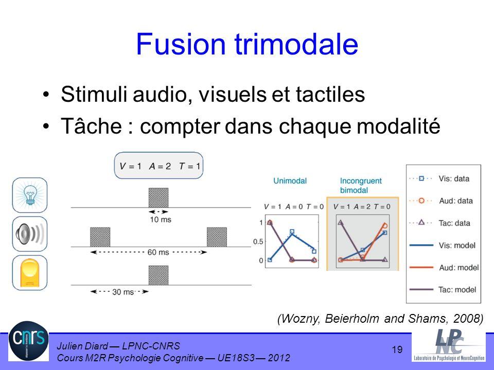 Julien Diard LPNC-CNRS Cours M2R Psychologie Cognitive UE18S3 2012 Fusion trimodale Stimuli audio, visuels et tactiles Tâche : compter dans chaque mod