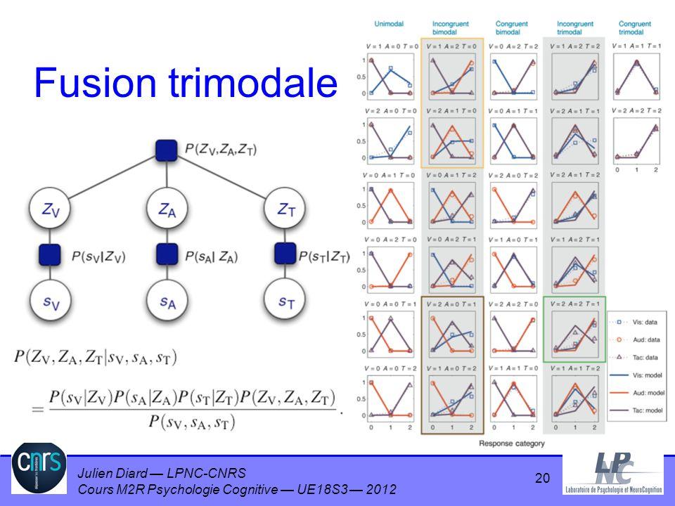 Julien Diard LPNC-CNRS Cours M2R Psychologie Cognitive UE18S3 2012 Fusion trimodale 20