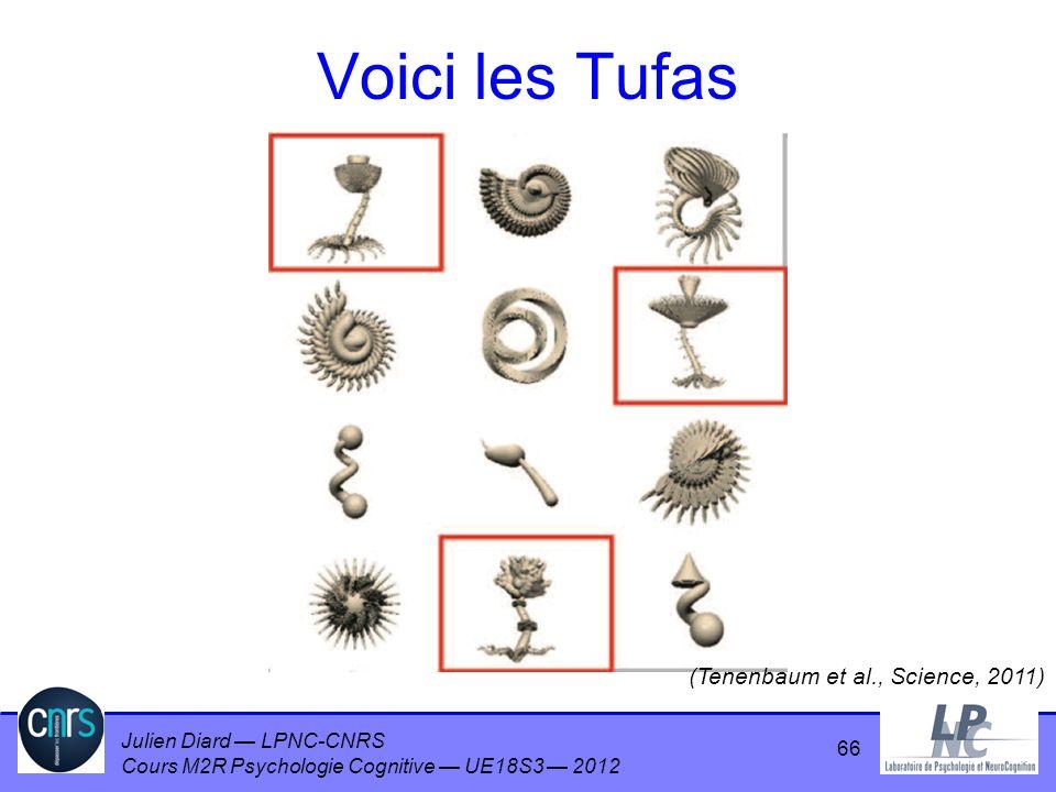 Julien Diard LPNC-CNRS Cours M2R Psychologie Cognitive UE18S3 2012 Voici les Tufas 66 (Tenenbaum et al., Science, 2011)