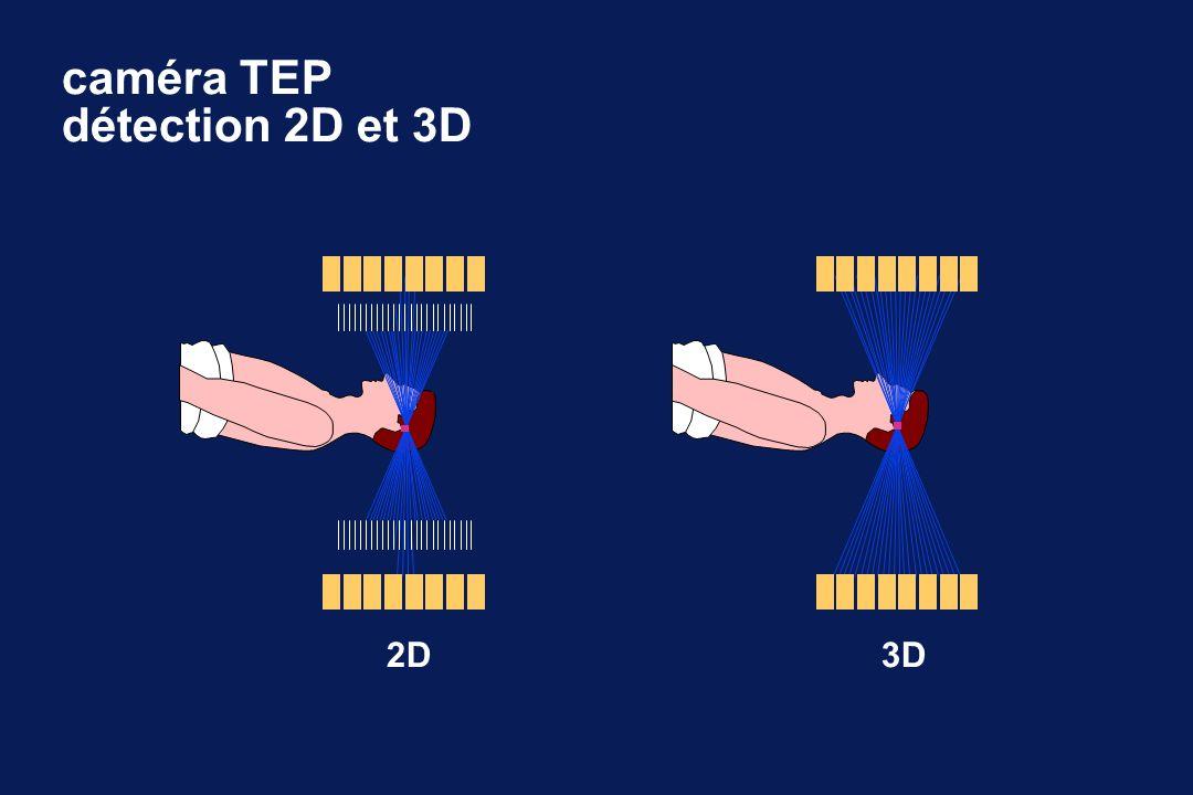 2D3D caméra TEP détection 2D et 3D