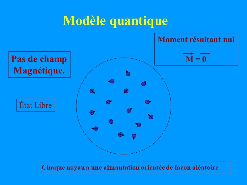 Modèle quantique État Libre Pas de champ Magnétique. Chaque noyau a une aimantation orientée de façon aléatoire Moment résultant nul M = 0