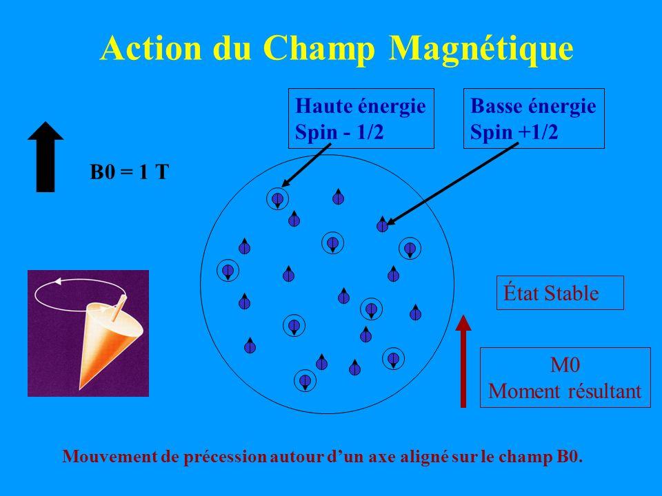 B0 = 1 T Action du Champ Magnétique Basse énergie Spin +1/2 M0 Moment résultant Haute énergie Spin - 1/2 Mouvement de précession autour dun axe aligné