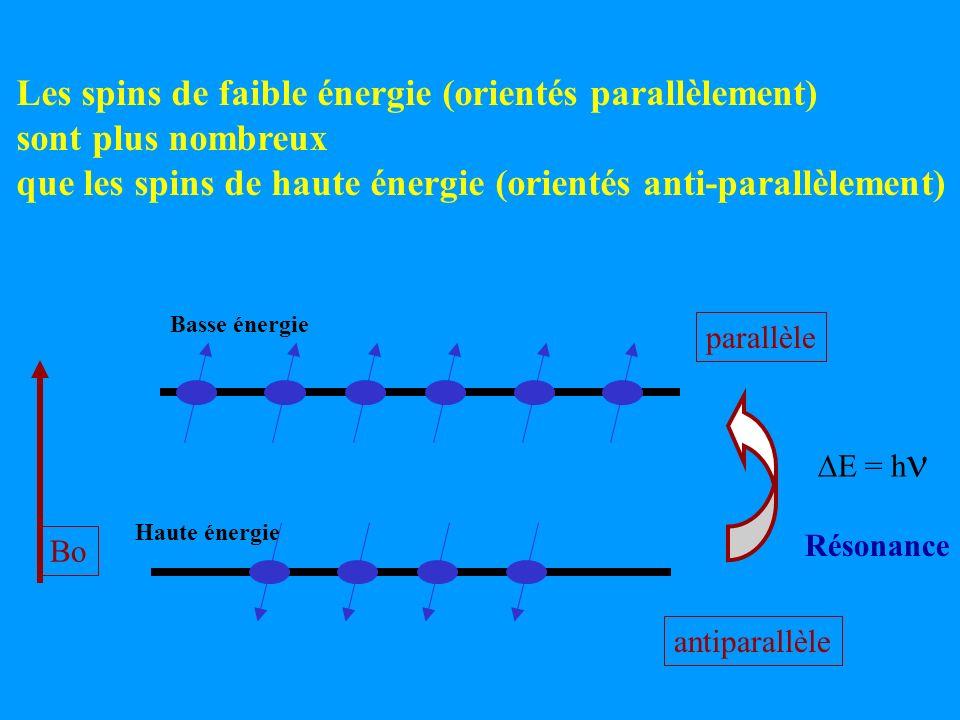 Les spins de faible énergie (orientés parallèlement) sont plus nombreux que les spins de haute énergie (orientés anti-parallèlement) parallèle antipar