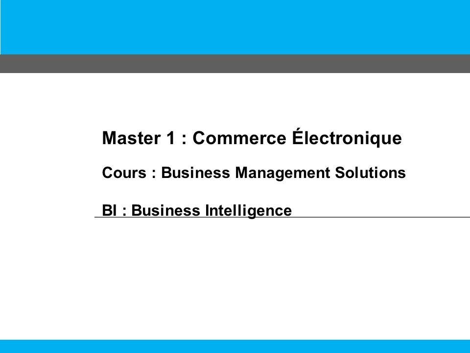 Master 1 : Commerce Électronique Cours : Business Management Solutions BI : Business Intelligence