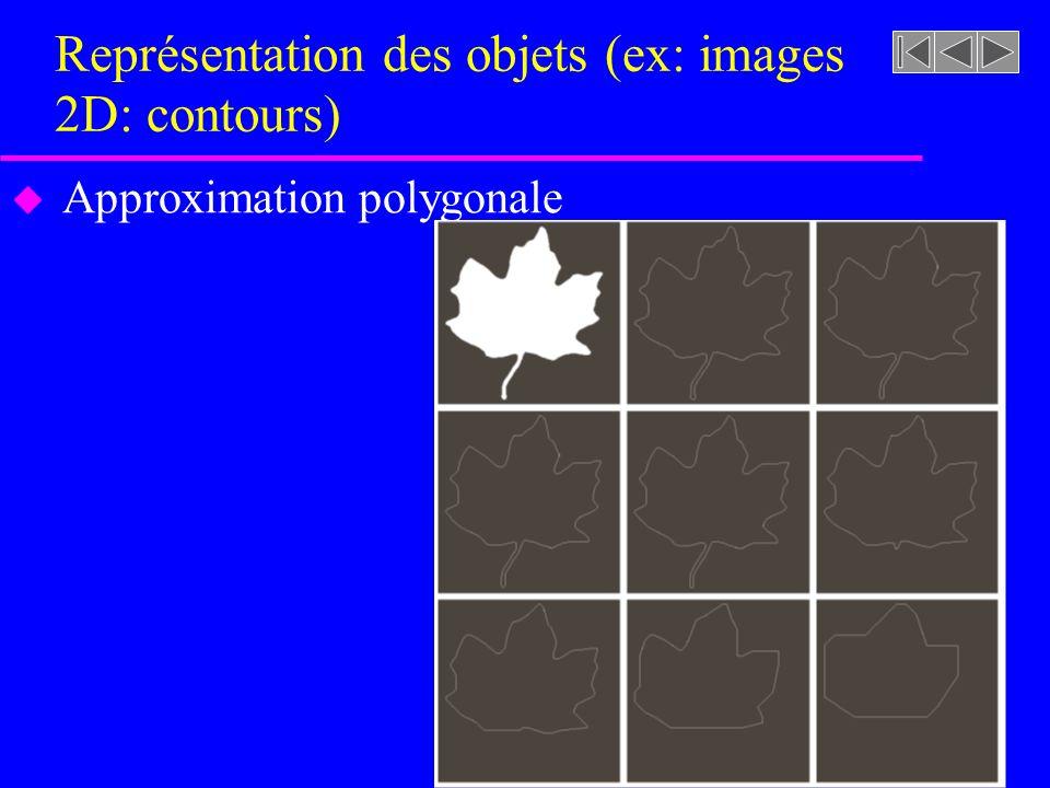 Représentation des objets (ex: images 2D: contours) u Approximation polygonale