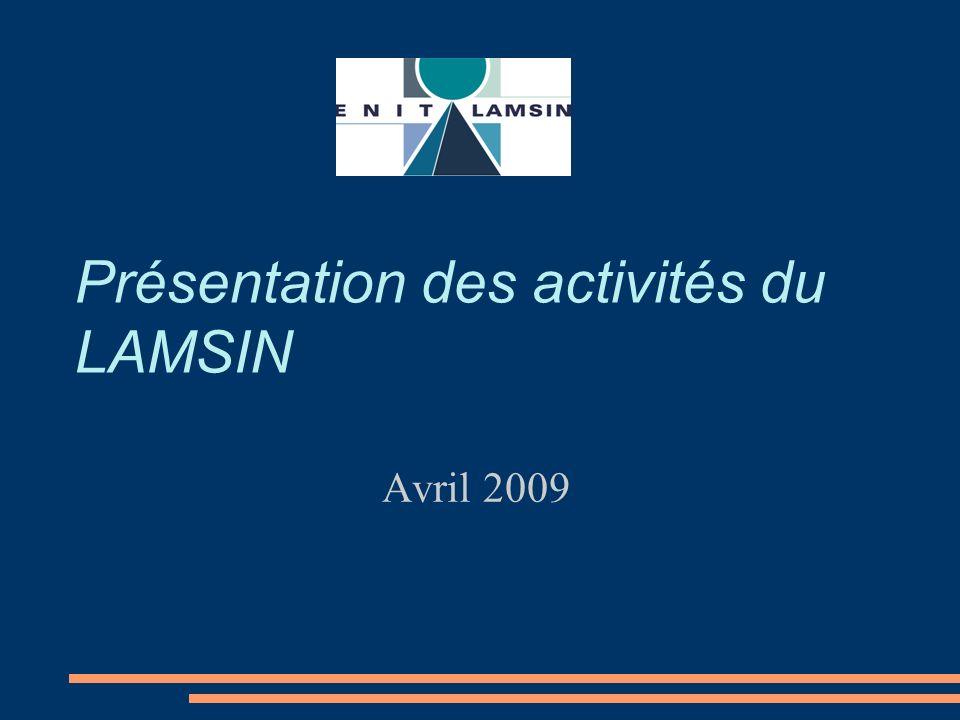 Présentation des activités du LAMSIN Avril 2009