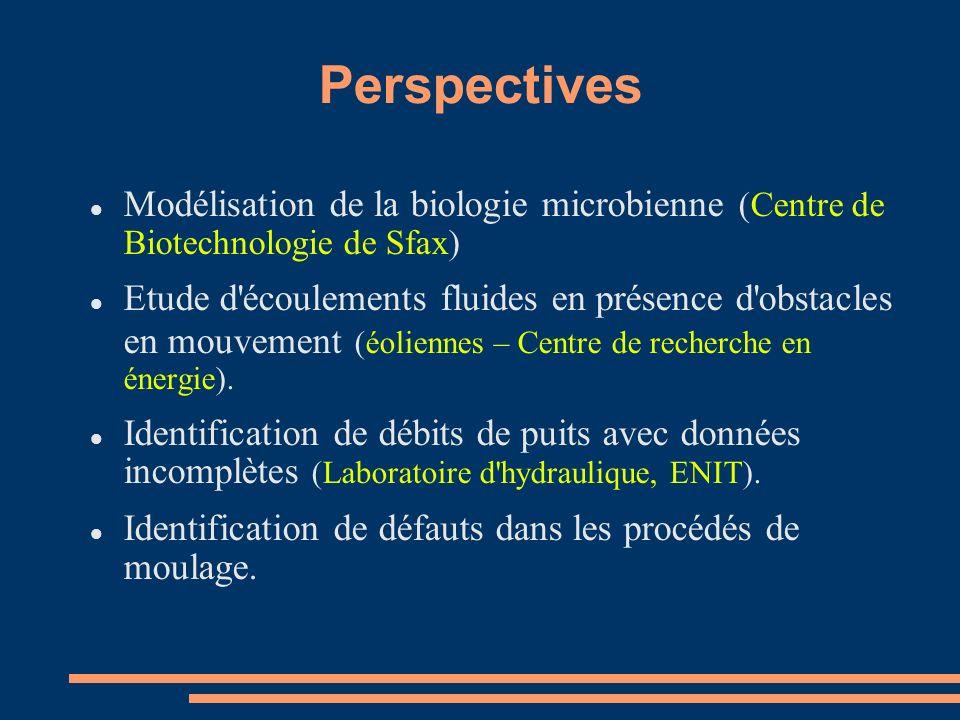 Perspectives Modélisation de la biologie microbienne (Centre de Biotechnologie de Sfax) Etude d écoulements fluides en présence d obstacles en mouvement (éoliennes – Centre de recherche en énergie).