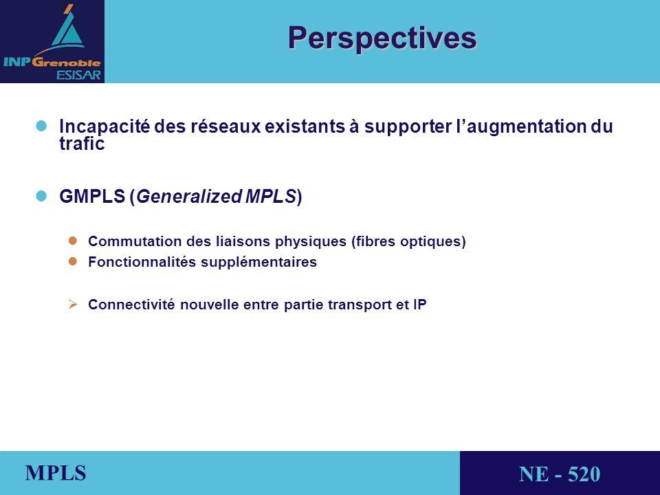 THALES AVIONICS MPLS NE - 520 Perspectives l lIncapacité des réseaux existants à supporter laugmentation du trafic l lGMPLS (Generalized MPLS) l lCommutation des liaisons physiques (fibres optiques) l lFonctionnalités supplémentaires Connectivité nouvelle entre partie transport et IP
