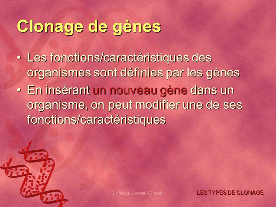 Collège Lionel-Groulx Clonage de gènes Les fonctions/caractéristiques des organismes sont définies par les gènesLes fonctions/caractéristiques des org