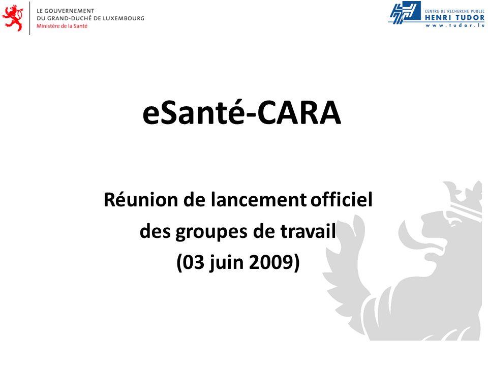 eSanté-CARA Réunion de lancement officiel des groupes de travail (03 juin 2009)