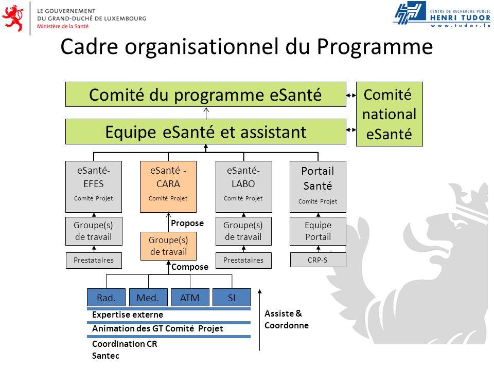 Cadre organisationnel du Programme Equipe eSanté et assistant Comité du programme eSanté Comité national eSanté CRP-SPrestataires eSanté- EFES Comité