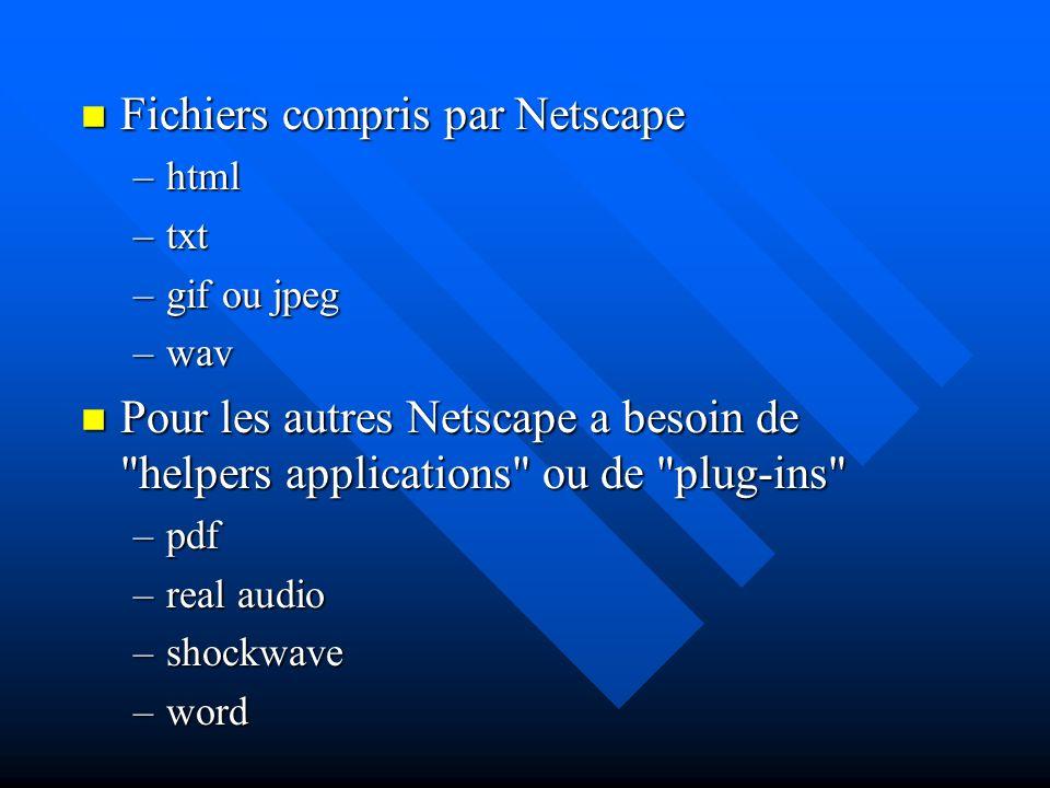 Fonctionnement technique Client Web Serveur Web www.hec.ca canarie.hec.ca 132.211.1.33 Ordinateur HP Unix Demande Fichier qui sera interprété par le navigateur Navigator ou Explorer