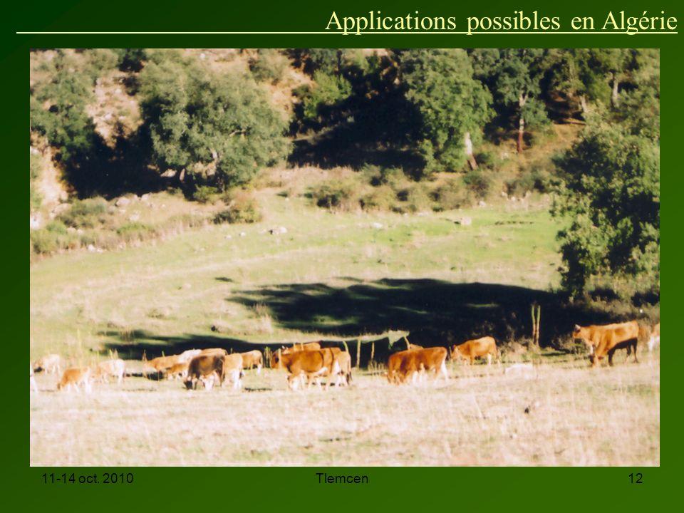 11-14 oct. 2010Tlemcen12 Applications possibles en Algérie