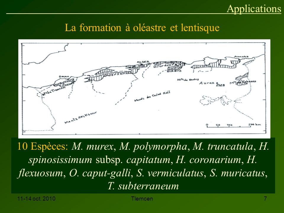 11-14 oct.2010Tlemcen7 10 Espèces: M. murex, M. polymorpha, M.