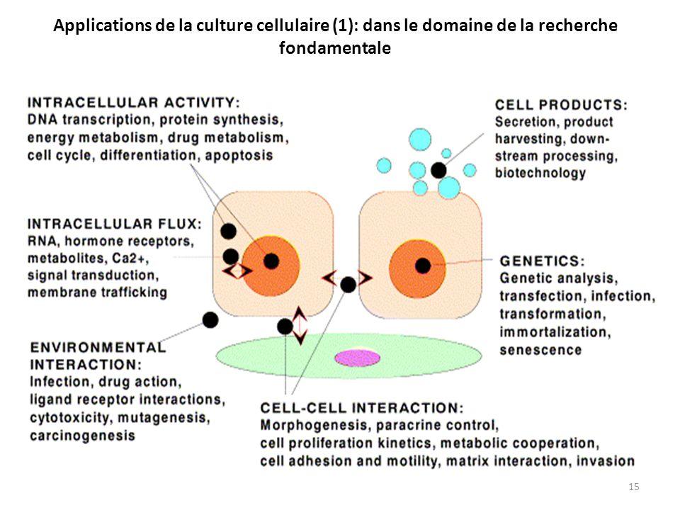 15 Applications de la culture cellulaire (1): dans le domaine de la recherche fondamentale