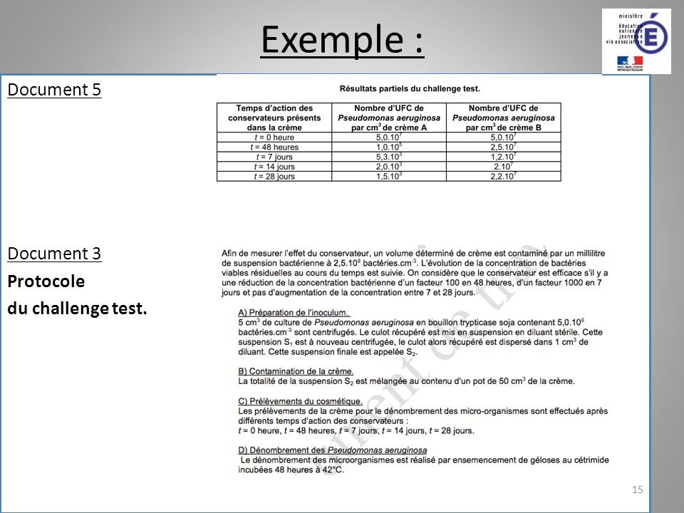 Exemple : Document 5 Document 3 Protocole du challenge test. 15
