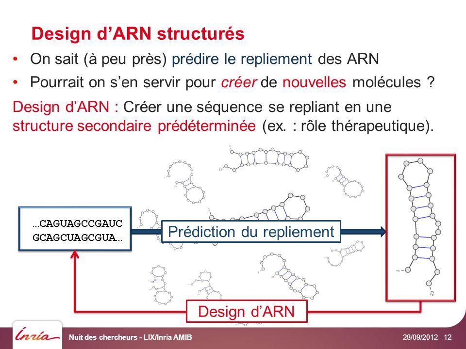 Design dARN structurés 28/09/2012 Nuit des chercheurs - LIX/Inria AMIB- 12 On sait (à peu près) prédire le repliement des ARN Pourrait on sen servir pour créer de nouvelles molécules .