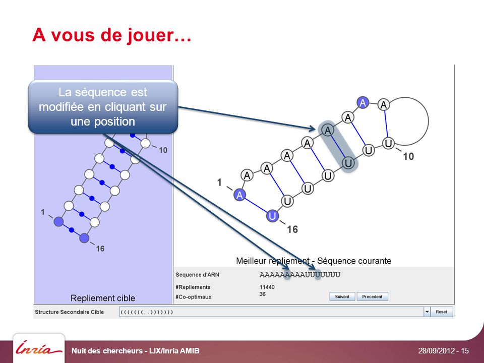 A vous de jouer… 28/09/2012 Nuit des chercheurs - LIX/Inria AMIB- 15 La séquence est modifiée en cliquant sur une position