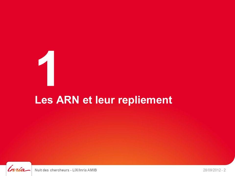 Les ARN et leur repliement Nuit des chercheurs - LIX/Inria AMIB28/09/2012- 2 1
