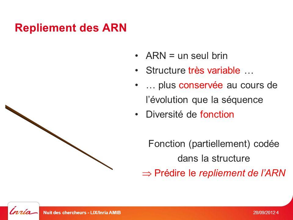 Repliement des ARN ARN = un seul brin Structure très variable … … plus conservée au cours de lévolution que la séquence Diversité de fonction Fonction (partiellement) codée dans la structure Prédire le repliement de lARN 28/09/2012 Nuit des chercheurs - LIX/Inria AMIB4