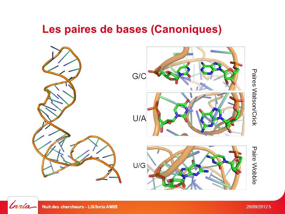 Les paires de bases (Canoniques) 28/09/2012 Nuit des chercheurs - LIX/Inria AMIB5 Canonical base-pairs G/C Paires Watson/Crick U/A U/G Paire Wobble