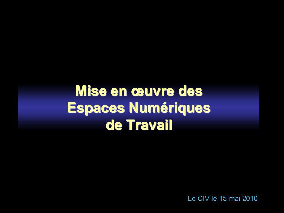 Mise en œuvre des Espaces Numériques de Travail Le CIV le 15 mai 2010