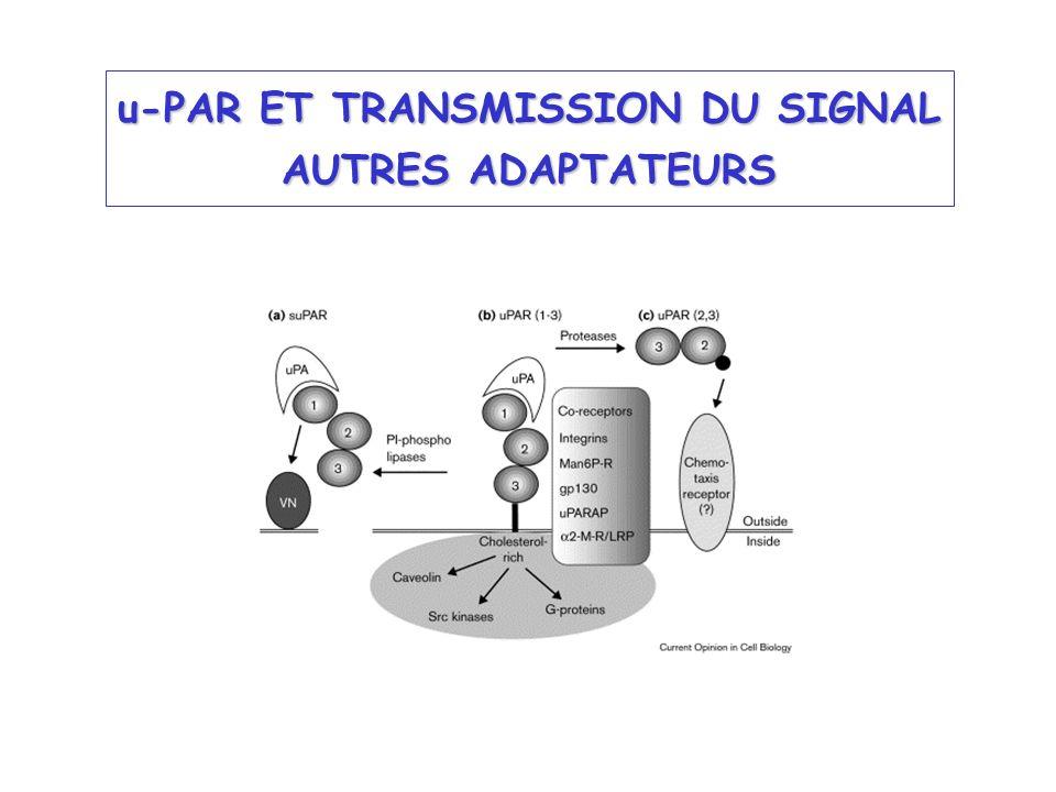 u-PAR ET TRANSMISSION DU SIGNAL AUTRES ADAPTATEURS