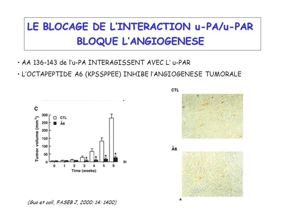 LE BLOCAGE DE LINTERACTION u-PA/u-PAR BLOQUE LANGIOGENESE AA 136-143 de lu-PA INTERAGISSENT AVEC L u-PAR LOCTAPEPTIDE A6 (KPSSPPEE) INHIBE lANGIOGENES