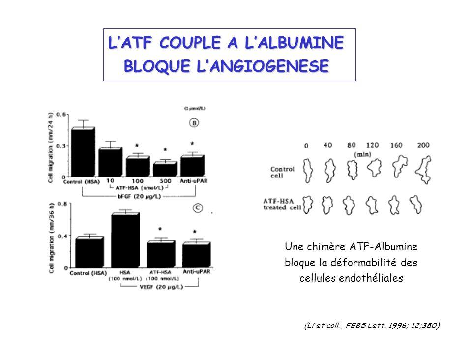 LATF COUPLE A LALBUMINE BLOQUE LANGIOGENESE Une chimère ATF-Albumine bloque la déformabilité des cellules endothéliales (Li et coll., FEBS Lett. 1996;