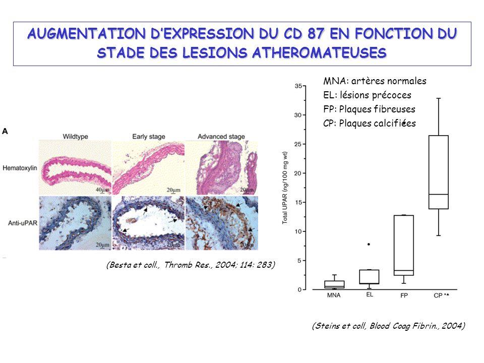 AUGMENTATION DEXPRESSION DU CD 87 EN FONCTION DU STADE DES LESIONS ATHEROMATEUSES MNA: artères normales EL: lésions précoces FP: Plaques fibreuses CP:
