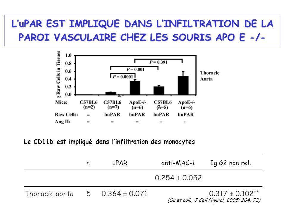 Thoracic aorta50.364 ± 0.071 0.254 ± 0.052 * 0.317 ± 0.102 ** n uPAR anti-MAC-1 Ig G2 non rel. LuPAR EST IMPLIQUE DANS LINFILTRATION DE LA PAROI VASCU