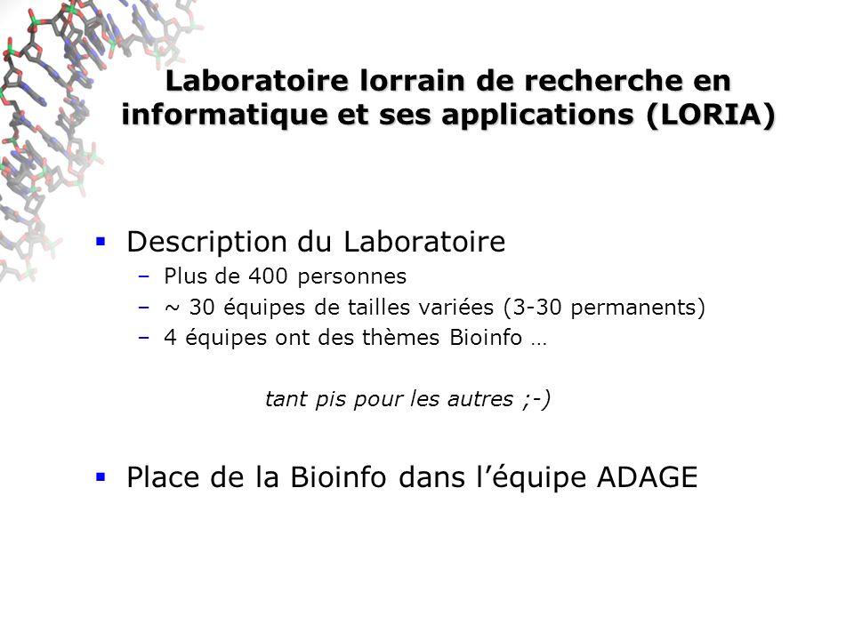 Laboratoire lorrain de recherche en informatique et ses applications (LORIA) Description du Laboratoire –Plus de 400 personnes –~ 30 équipes de tailles variées (3-30 permanents) –4 équipes ont des thèmes Bioinfo … tant pis pour les autres ;-) Place de la Bioinfo dans léquipe ADAGE