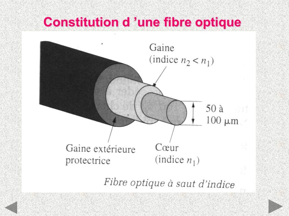 Constitution d une fibre optique