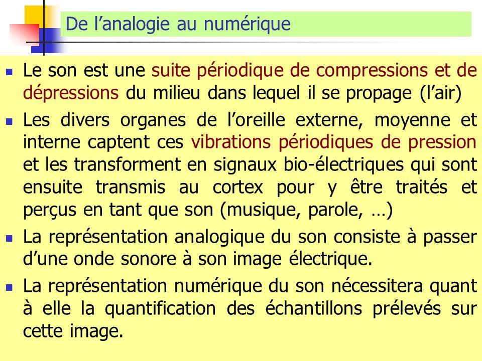 De lanalogie au numérique Le son est une suite périodique de compressions et de dépressions du milieu dans lequel il se propage (lair) Les divers orga