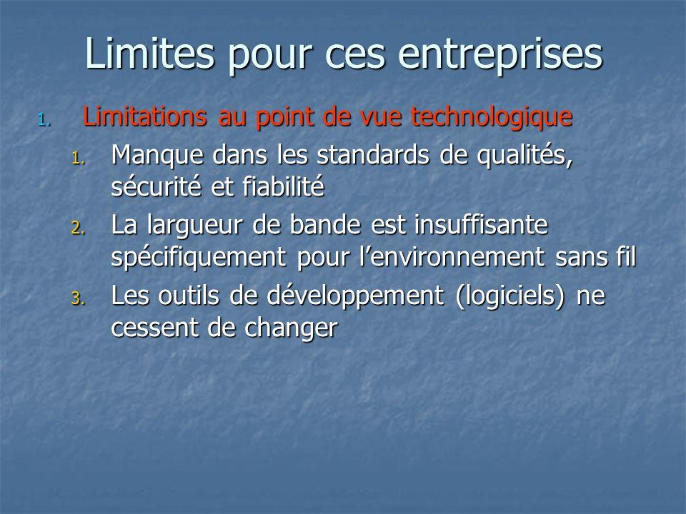 Limites pour ces entreprises 1. Limitations au point de vue technologique 1.