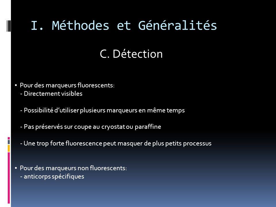 I. Méthodes et Généralités Pour des marqueurs fluorescents: - Directement visibles - Possibilité dutiliser plusieurs marqueurs en même temps - Pas pré