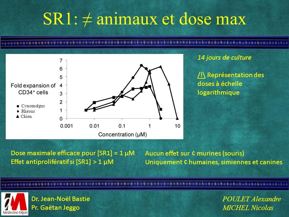 SR1: animaux et dose max Cynomolgus Rhésus Chien 14 jours de culture /!\ Représentation des doses à échelle logarithmique Dose maximale efficace pour