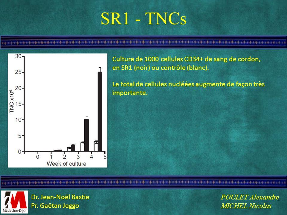 SR1 - TNCs Culture de 1000 cellules CD34+ de sang de cordon, en SR1 (noir) ou contrôle (blanc). Le total de cellules nucléées augmente de façon très i