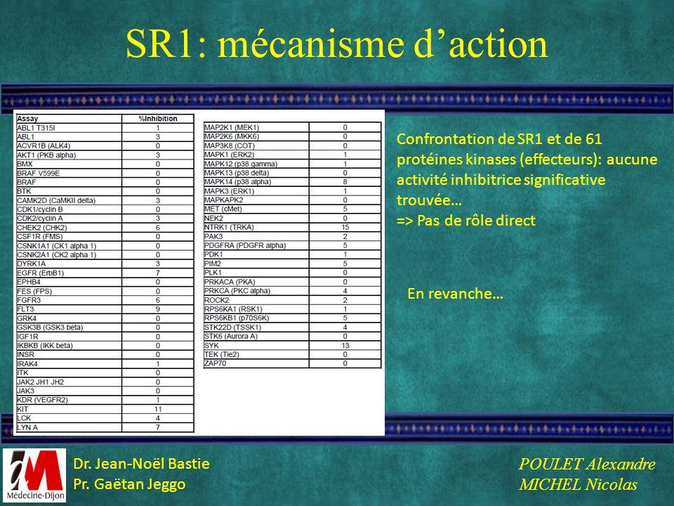 SR1: mécanisme daction Confrontation de SR1 et de 61 protéines kinases (effecteurs): aucune activité inhibitrice significative trouvée… => Pas de rôle