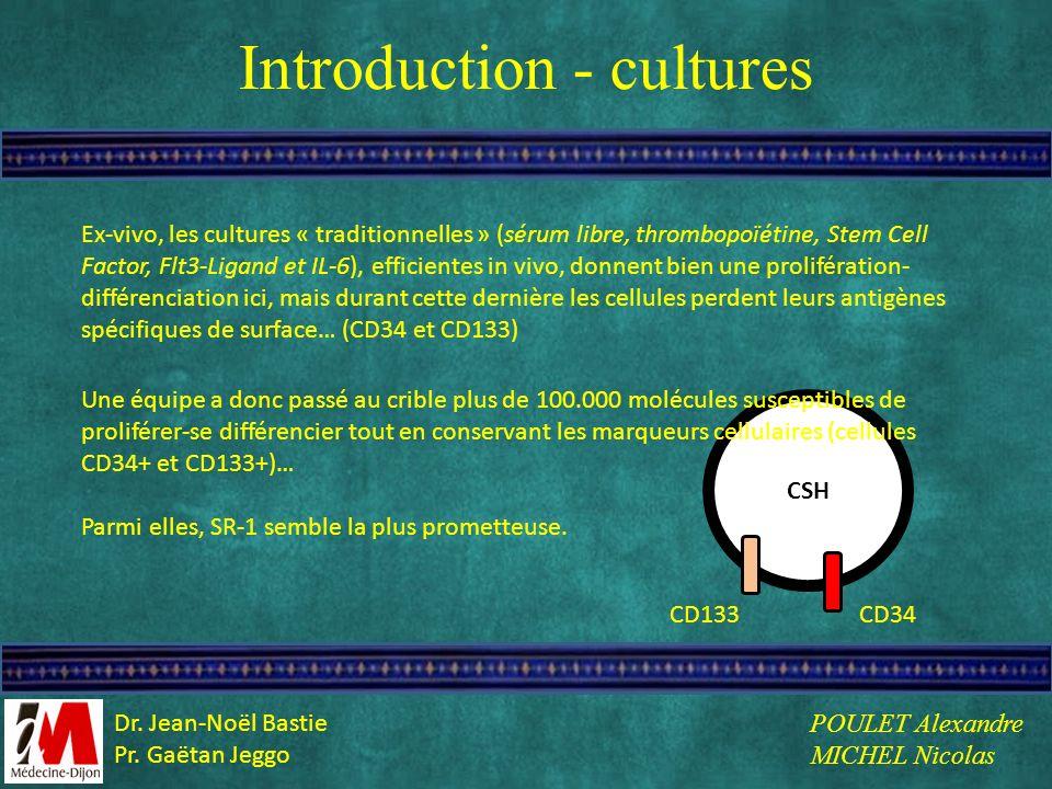 Introduction - cultures Ex-vivo, les cultures « traditionnelles » (sérum libre, thrombopoïétine, Stem Cell Factor, Flt3-Ligand et IL-6), efficientes i